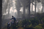 official screenshot pc trevor in the woods